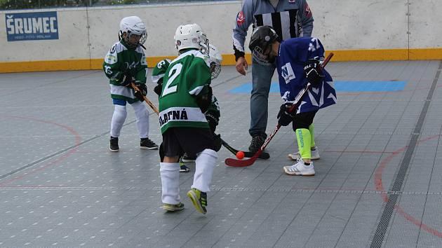 Prachatickou hokejbalovou arénu obsadili v sobotu nejmenší hráči z jihu a západu Čech.