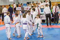 Karatisté z Karatedo klubu Tsunami si vybojovali několik účastí na republikovém šampionátu.