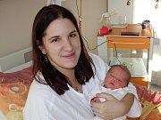 Ve Vimperku žijí  rodiče Monika a Martin, kterým se v písecké porodnici ve čtvrtek 16. listopadu v 15:04 narodila Leontýna Rakoušová. Holčička vážila 3600 gramů a měřila 51 centimetrů. Na sestřičku se těšila také Andrejka (5,5).