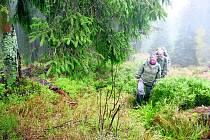 Návštěvníci Parku mohou vyrazit i na rašeliniště.