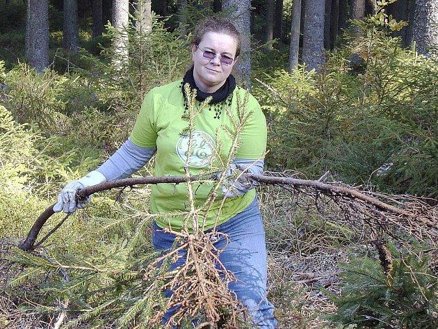 Pomáhat s klestím do šumavského lesa chodí jak dobrovolníci z řad dospělých, tak i děti. Naposledy skupina pracovala v okolí Strážnýho.