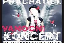 V sobotu 12.12.2009 se od 20.00 hodin uskuteční velmi živý Vánoční koncert v prachatickém hotelu Park.