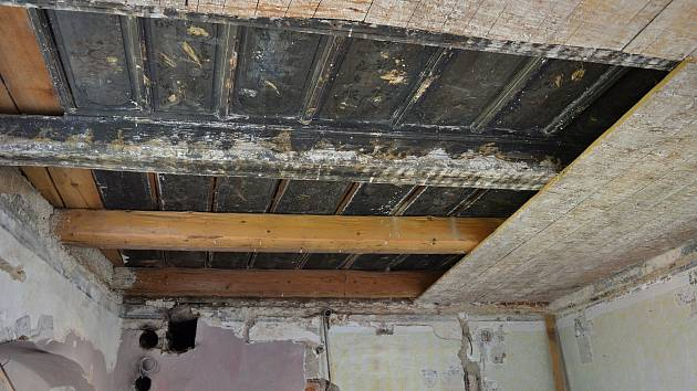 Zámecký strop.