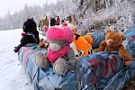 Úžasné odpoledne plné zábavy prožili v sobotu všichni, kteří přišli závodit i fandit ve sjezdu na čemkoliv. A že to na namrzlém sněhu z kopce parádně jelo, tedy těm, kteří nepodcenili přípravu stroje.
