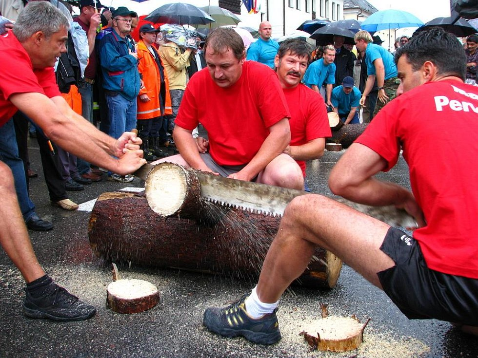 Na Volařských slavnostech dřeva samozřejmě nemohla chybět ani soutěž o Putovní dřevák. Družstva předvedla opravdu zajímavé výkony.