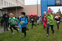 "V okolí Prachatic se v sobotu 5. listopadu běžel již čtvrtý ročník terénního běhu tentokrát pod názvem ""Pivovarský Trail run""."