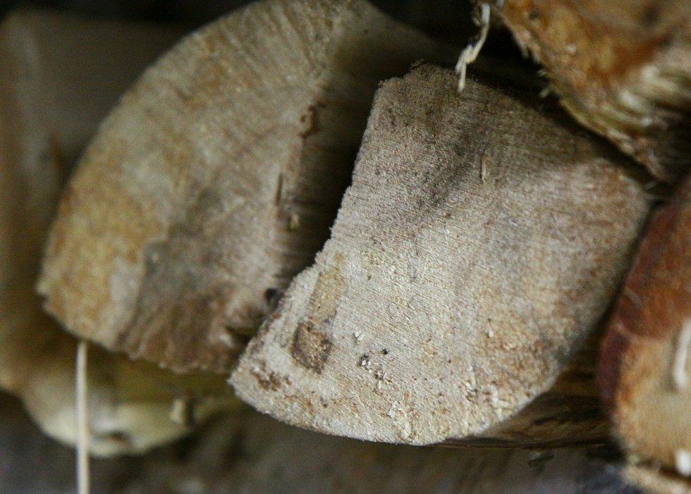 Topí se bukovým a březovým dřevem.