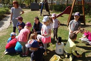 Děti z Mateřské školy Paraplíčko si užily péči o Zemi.