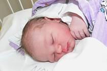 Sofie Hromasová se narodila 21. července ve 3,50 hodin v písecké nemocnici. Měřila 51 centimetrů a vážila 3750 gramů. Za bráškou Davidem si jej do Vimperka odvezou  Jana a tatínek Jakub.