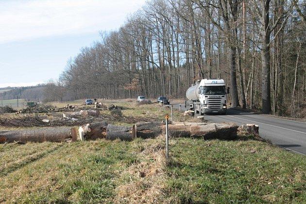 První na řadu přišly stromy na soukromém pozemku, jejich stav opakovaně hrozil nebezpečím pro silniční provoz.