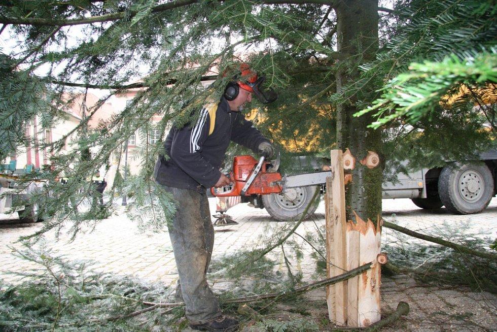 Poslední úpravy znamenají zatlouct vymezovací klíny a odříznout poslední větve, aby se pod strom vešel dřevěný betlém.