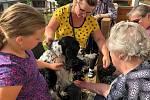 Opět po roce do Prachatic zavítal spolek Tam, kde zvířata pomáhají. Navštívil dvě zařízení a potěšil nejen seniory, ale i osoby se zdravotním postižením.