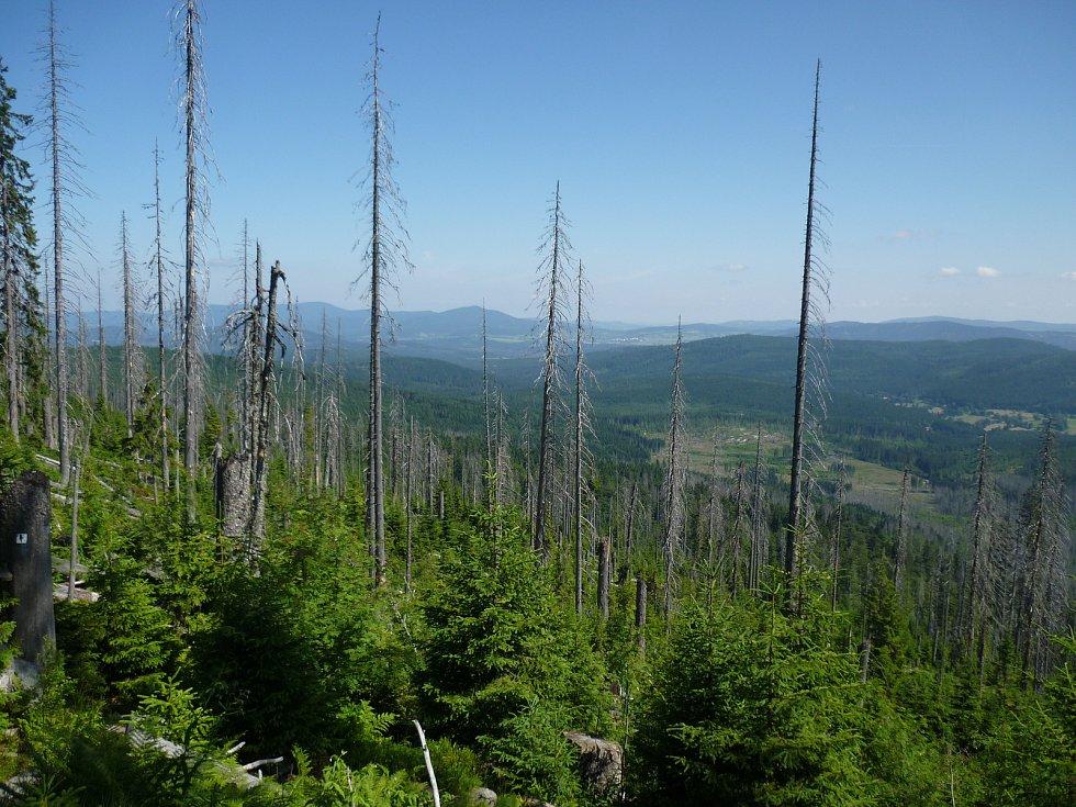 Národní park Šumava, srovnání snímků, rok 2013.