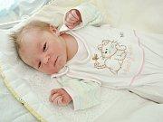 Prvním miminkem do rodiny Höhneových je Abigail Höhneová. Narodila se ve strakonické porodnici v úterý 17. dubna dvě minuty po jedné hodině odpoledne. Vážila 3740 gramů. Rodina žije ve Vimperku.
