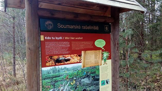Vydejte se na procházku Soumarským rašeliništěm