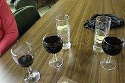 Ve Volarech hrála cimbálovka a pilo se víno.