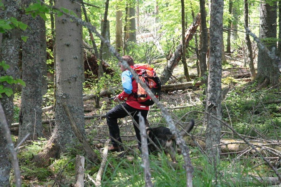 Oblast Národního parku Šumava od Nového Údolí přes Vltavskou cestu k Nové Peci až po Plešné jezero se ve čtbrtek stala místem pátrání po dvanácti ztracených účastnících nelegálního závodu. Naštěstí se jednalo o součinnostní cvičení záchranných složek.