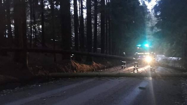 Jednotka SDH Stachy vyjela na Zadov odstranit padlý strom přes cestu.