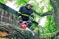 OHROZIL DŮM. Jihočeští hasiči likvidovali následky větru a bouře z úterní noci na více než sto místech po celém kraji. Do Nedvědice na Soběslavsku (na snímku) vyjeli odstranit starý ořech, který se rozštípl a ohrožoval přilehlý statek.