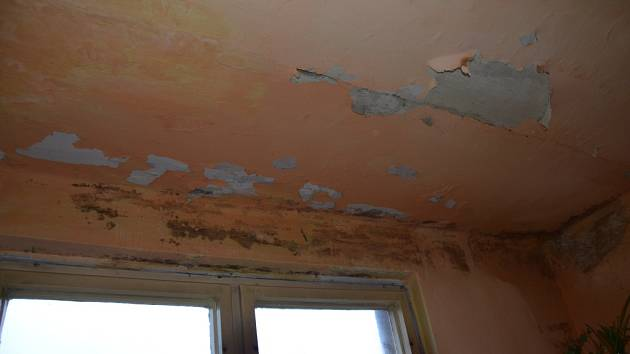 V bytech ve třetím patře bytovky ve Stožci se na zdech objevuje plíseň. Svobodovi dokonce v některých místech už plíseň i oškrabali, nicméně zbytečně.