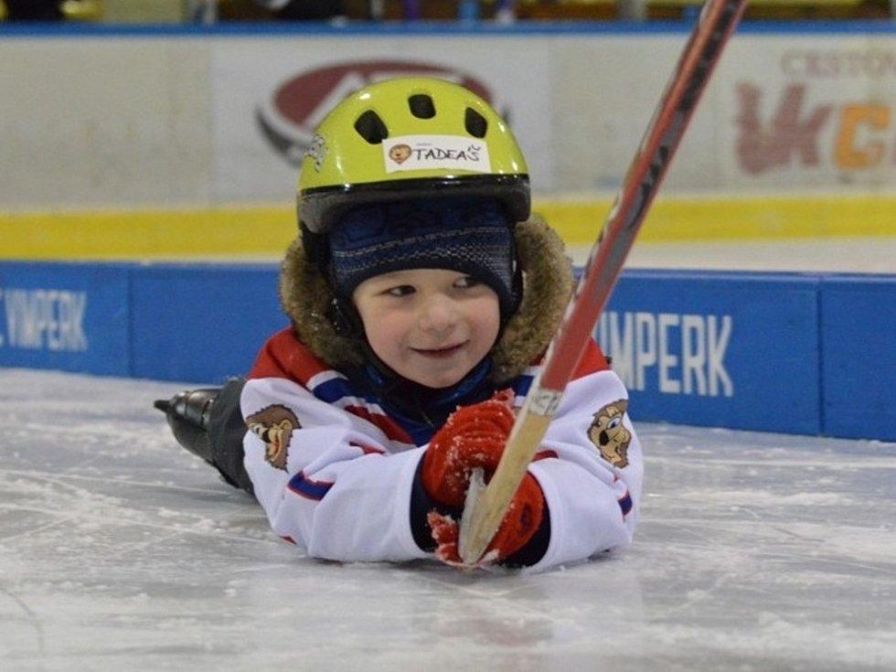 Pojď si zahrát hokej. Ilustrační foto