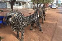 Život v Bamaku okem prachatického cestovatele Tadeáše Šímy.