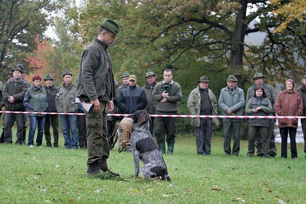 Na Netolicku se v sobotu uskutečnil 52. ročník Mistrovství Šumavy.