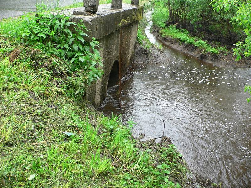 Rozvodněná Vltava v Houžné.