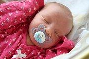 Štěpánka HOVORKOVÁ, Volary. Narodila se 9. listopadu v 6.18 hodin v prachatické porodnici, vážila 3440 gramů. Má sestřičku Annu Běleckou (3 roky). Rodiče: Nikol Allinova a Michal Hovorka.