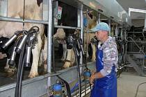 Se čtyřmi dodavateli mléka z Prachaticka ukončila klatovská mlékárna smlouvu.  Nebahov se to netýká.