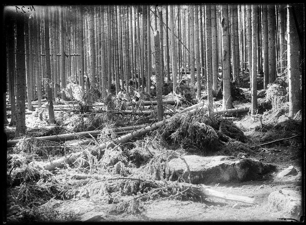 Fotografie Josefa Seidela vytvořená okolo roku 1900 na neznámém místě na Šumavě.