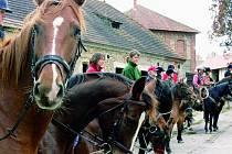 JEZDECKÁ PŘEHLÍDKA. Na zámku Skalice se sešla asi dvacítka jezdců, kteří se poté vydali na hon na lišku. Kdo v sobotu přijel do Bohumilic, ten se rozhodně ani chvilku nenudil.
