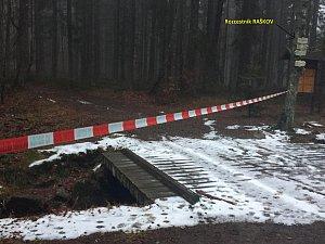 Mrtvý muž nalezený na Šumavě byl zavražděn