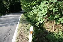 Jen lehkým zraněním skončila úterní dopravní nehoda motocyklisty v zatáčce pod Libínským Sedlem ve směru do Prachatic.