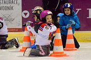 O akci Pojď hrát hokej byl ve Vimperu pokaždé zájem.