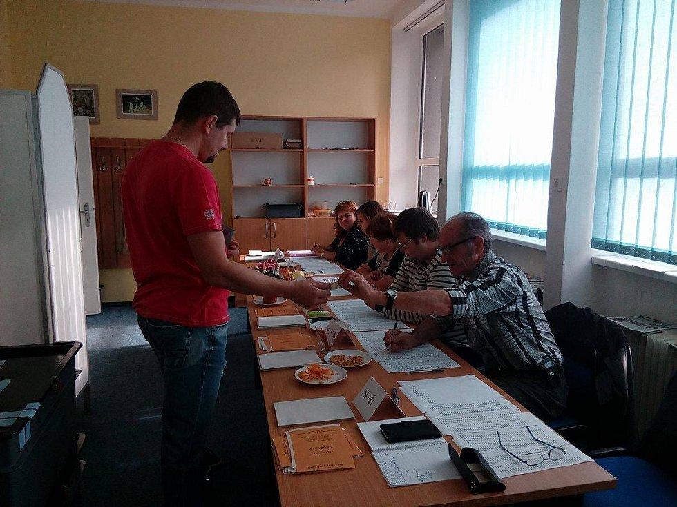 Parlamentní volby ve Zdíkově.