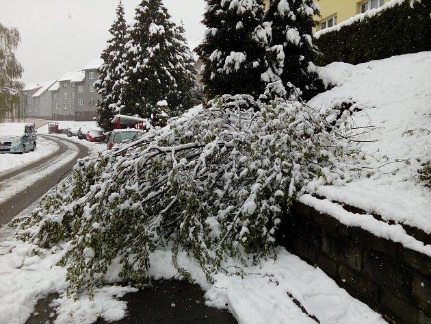 Husté noční a ranní sněžení způsobilo na Prachaticku místa kalamitní stav. Těžký sníh lámal větvě istromy. Následné výpadky proudu působily problémy vobchodech ina úřadech.