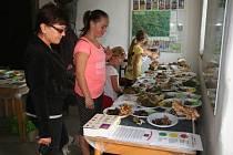 Výstava hub v Prachaticích.