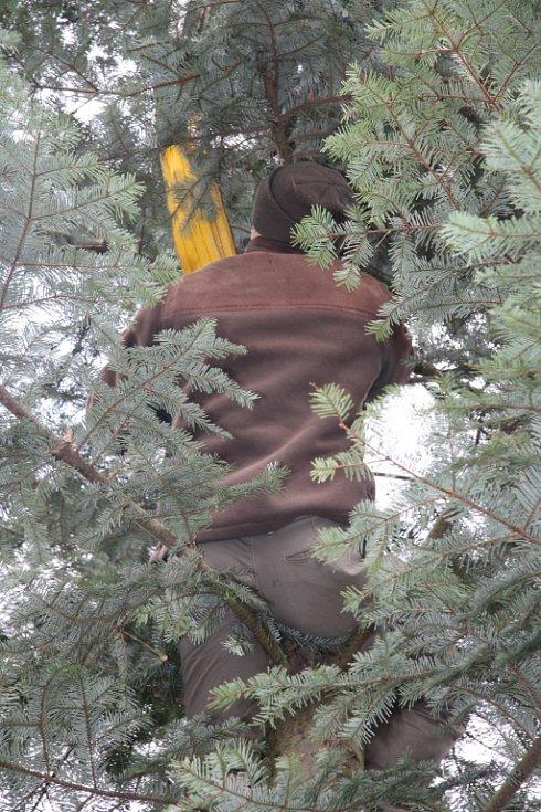 Uchycení lan se musí sundat ručně, takže zpátky do koruny.