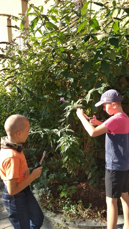 Pravidelné návštěvy Domova Matky Vojtěchy se staly již nedílnou součástí výuky Montessori při ZŠ Národní v Prachaticích.