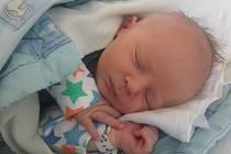 David Roubíček se narodil v českobudějovické porodnici v neděli 3. července ve 13.52 hodin rodičům Žanetě Roubíčkové a Davidu Frkousovi.  Vážil 3,32 kilogramu. Malý David bude vyrůstat Hrbově.
