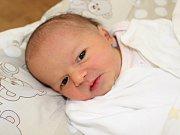 Prvním miminko mají manželé Nikola a Jan Mikešovi z Prachatic. Jejich Natálka Mikešová se narodila v prachatické porodnici v pondělí 13. listopadu  třiatřicet minut po desáté hodině dopoledne. Sestřičky holčičce navážily 3150 gramů.