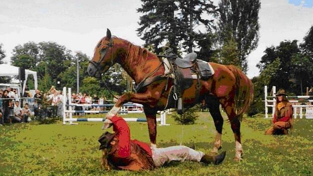 Setkání rodáků, VI. Pošumavské slavnosti obce Zbytiny i Jihočeské léto s párou se uskuteční již v sobotu 9. srpna. Vystoupení zajišťuje Wild west show Bufallo Billa.