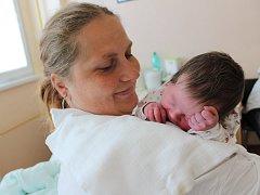 Šestiletý David a dvouletá Sabinka mají od středy 31. května malou sestřičku Pavlínku Kýbusovou. Holčička se narodila v prachatické porodnici ve 12.15 hodin a vážila 3950 gramů. Rodiče Žaneta a Roman Kýbusovi žijí ve Vlachově Březí.
