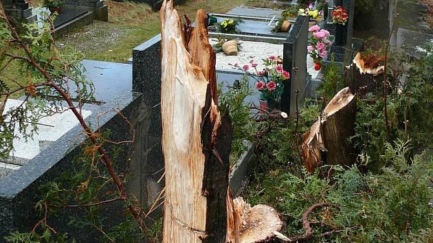 Před pěti lety napáchal vítr obrovské škody.