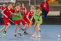 Mladí vimperští florbalisté bojovali na turnaji v Písku.