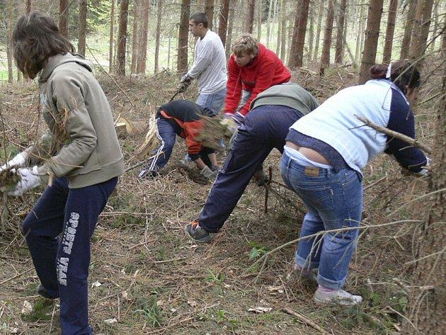 Školáci uklízeli v lese