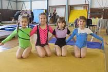 Gymnastky opět zacvičily dobře.