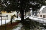 Husté noční a ranní sněžení způsobilo na Prachaticku místa kalamitní stav. Těžký sníh lámal větvě i stromy. Následné výpadky proudu působily problémy v obchodech i na úřadech.