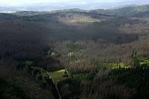 Národní park Šumava.